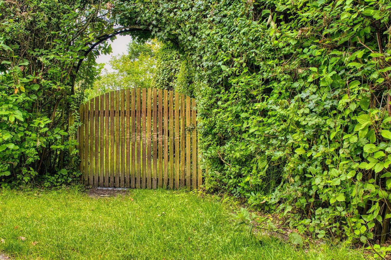 garden gate, wood, goal